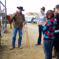 Horsemanship first day